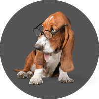 glasses-hound-rtl-special-icons